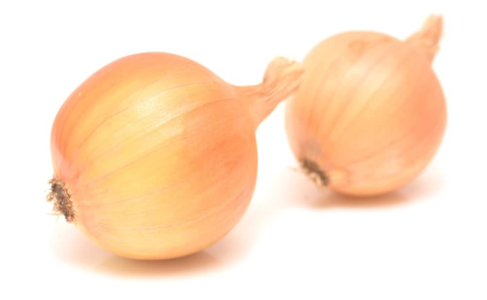 Two Spanish Onions