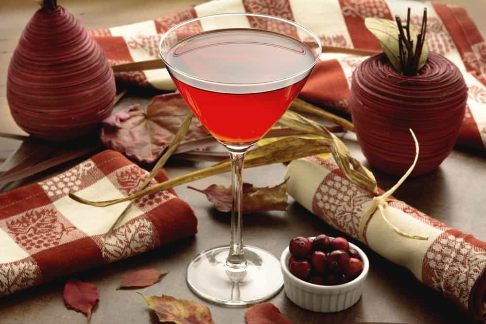 Crantini cocktail or cranberry cocktail with fall or autumn themed background.