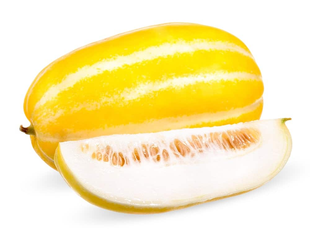 A bright yellow with white stripes Korean Melon.