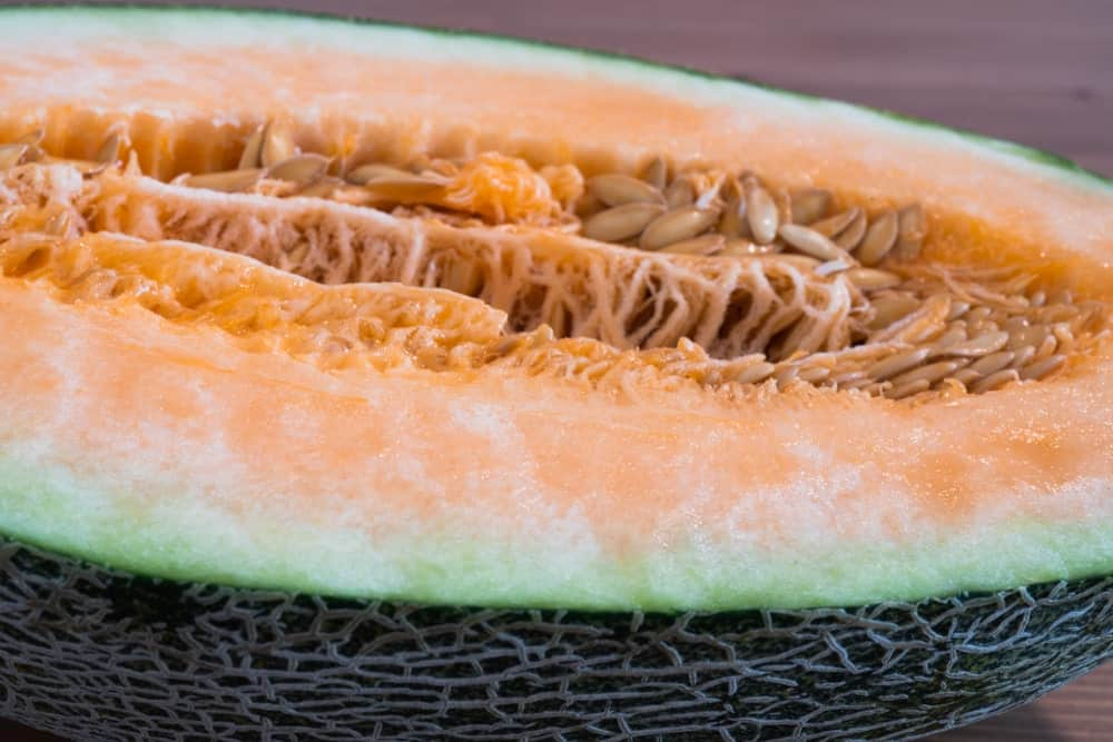 A close-up of a New Century melon or Chinese Hami Melon.