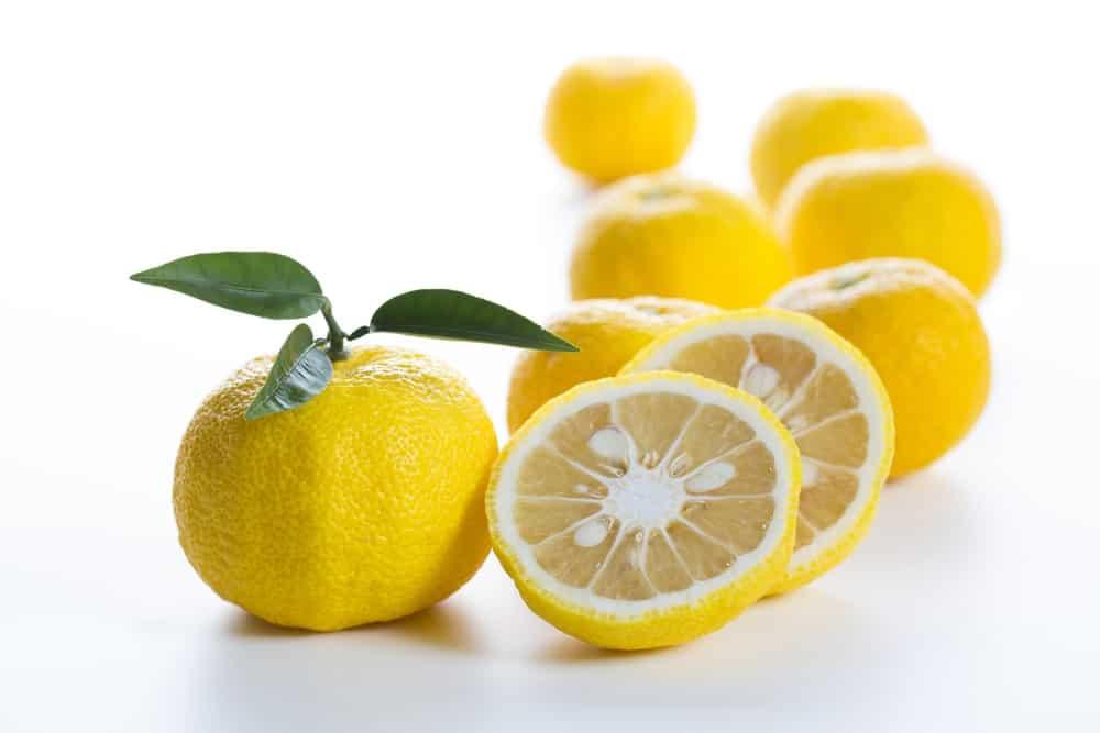 Japanese citron fruit