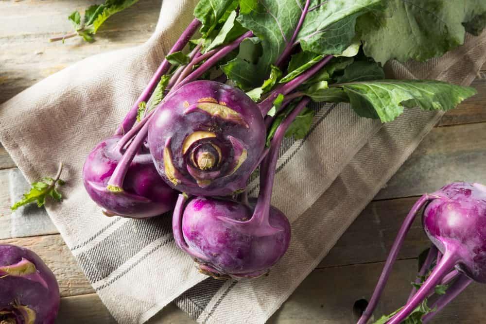 Purple colored kohlrabi