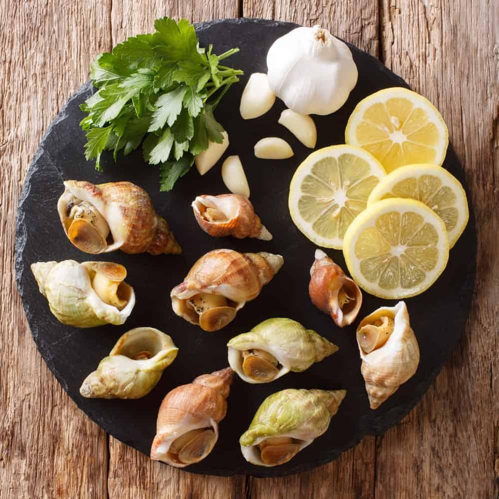 Snails food