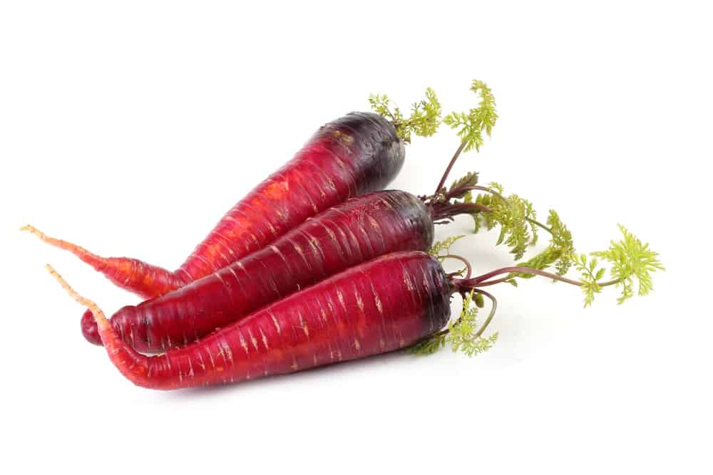 Three pieces of Atomic Red Carrots with leaves on a white background.