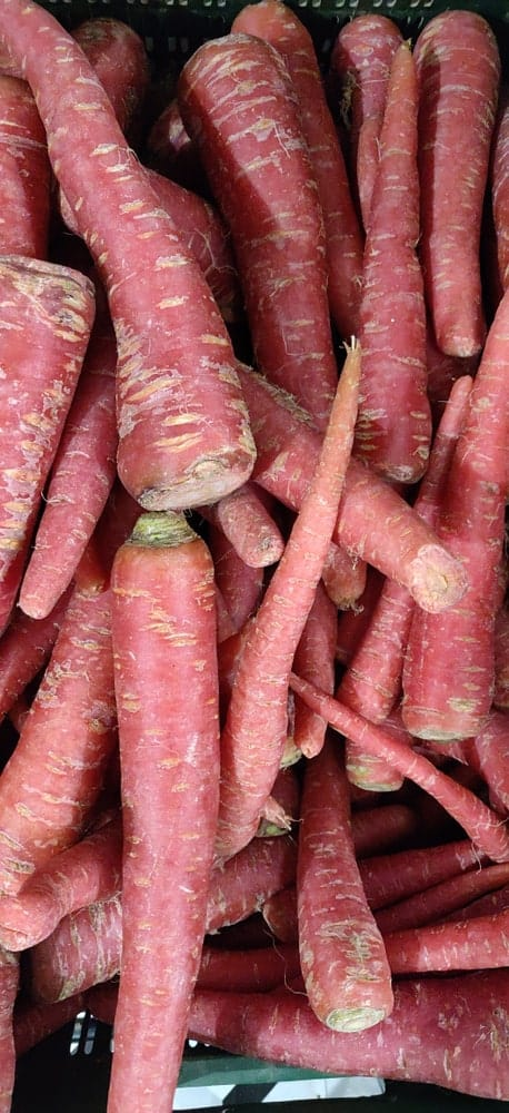 Cleaned bunch of Red Core Carrots for sale in a crate.