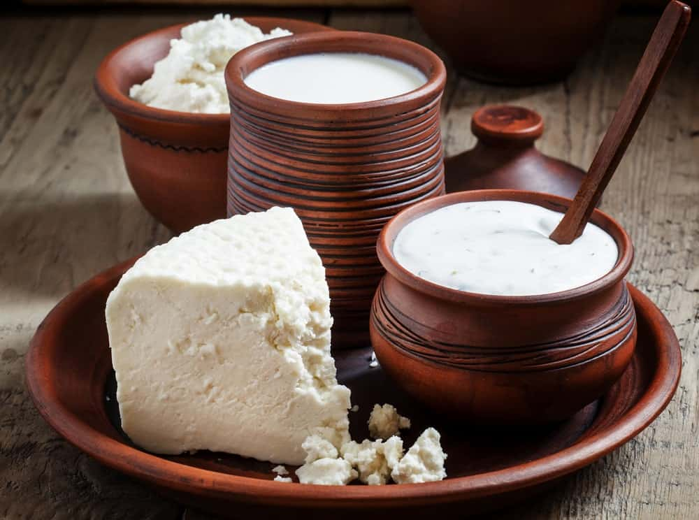 A clay pot set with the dairy products from a sheep: milk, cheese and yogurt.