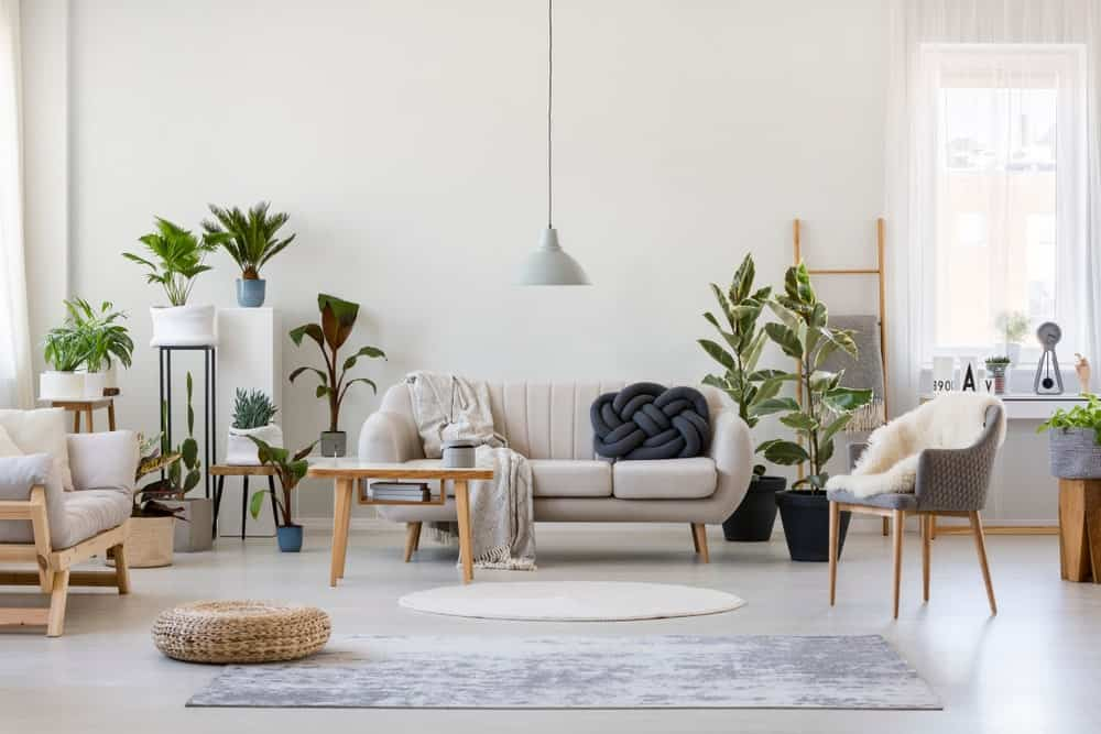 Spacious white living room featuring pouf and gray armchair with plants and sofa near wooden table.