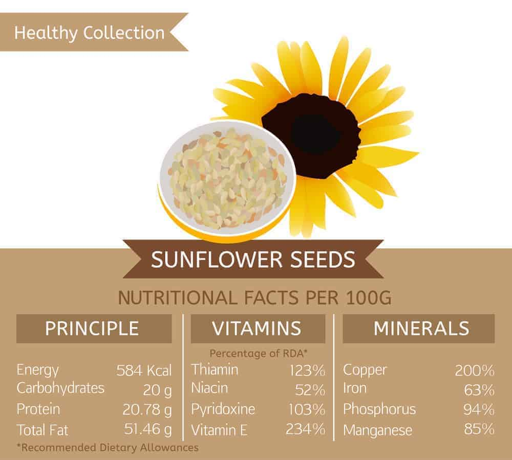 Sunflower seed nutritional facts chart.