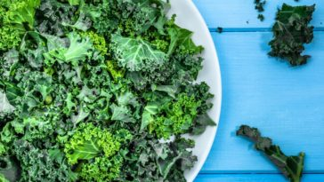 A plate of kale on a blue wooden table.