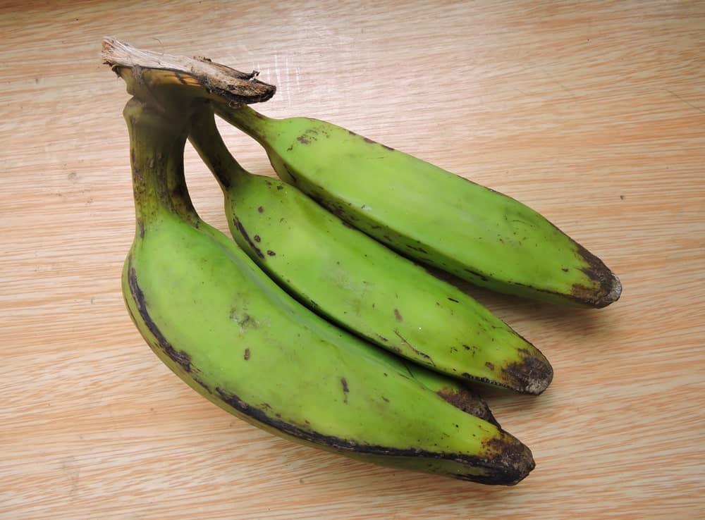 A cluster of raw Manzano bananas.