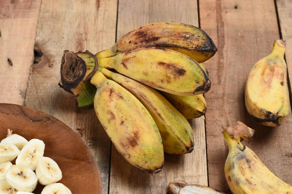 A look at saba bananas with sliced pieces on a wooden plate.