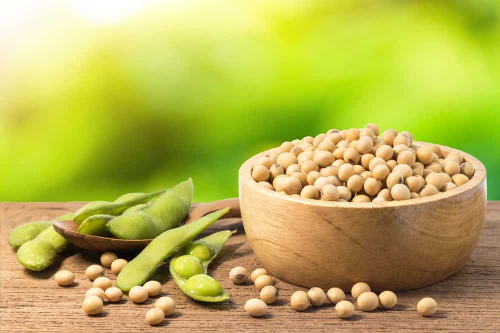 A close look at a wooden bowl filled with soybeans.