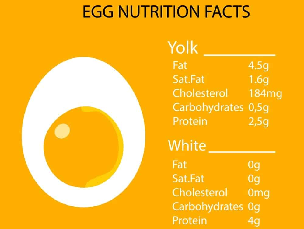 An illustrative chart depicting the nutritional facts of the chicken egg.