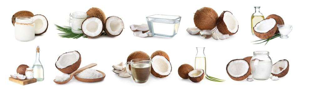 Coconuts used in various ways.