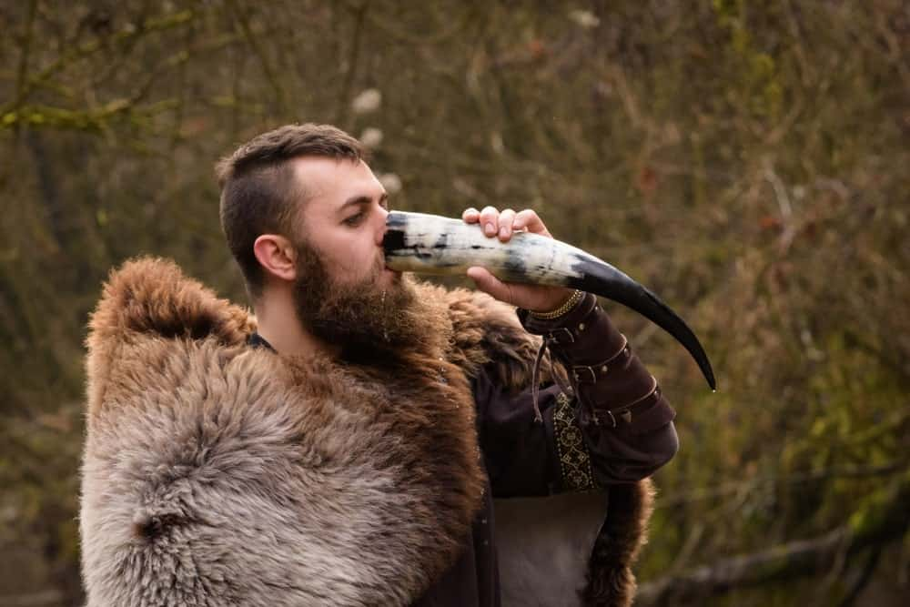A Viking drinking mead from a horn.