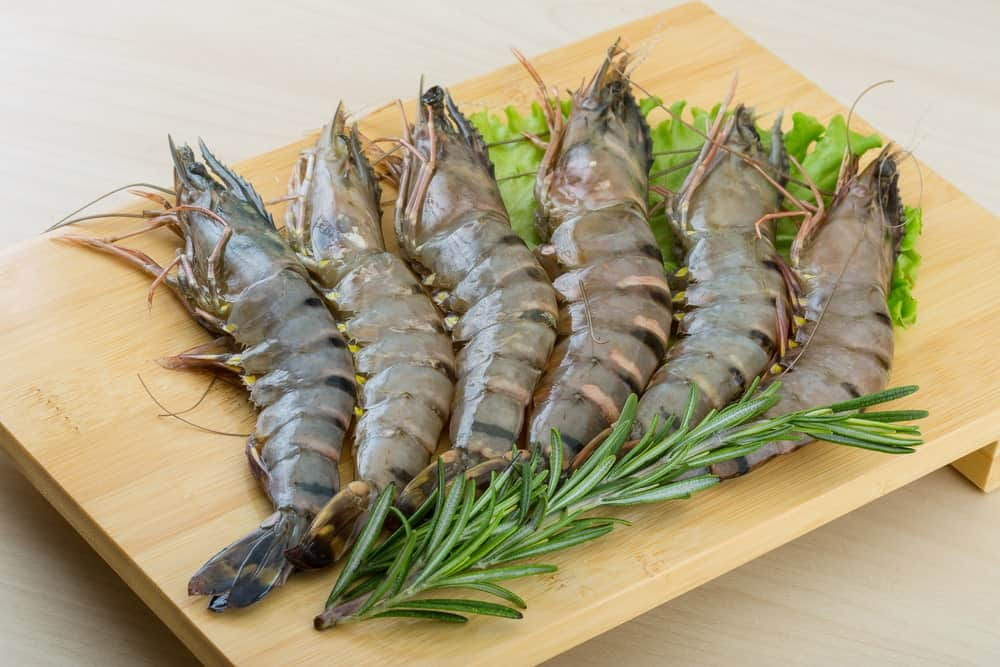 A row of raw tiger shrimps on a wooden board.