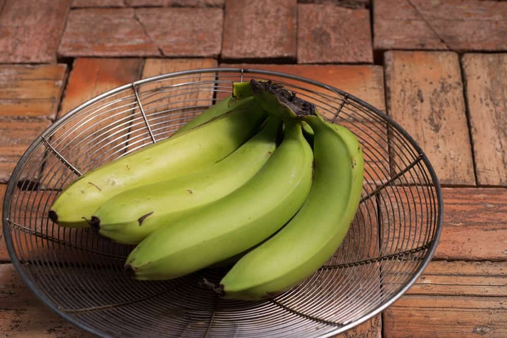 A cluster of unripe green bananas on a basket.