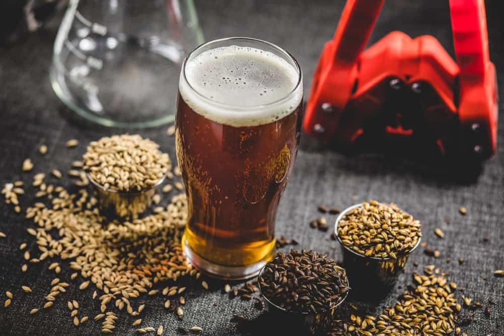 A glass of homebrew beer with various barley and brewing equipment.